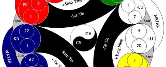 Teoria Zang Fu