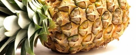 Abacaxi, tropicalíssimo