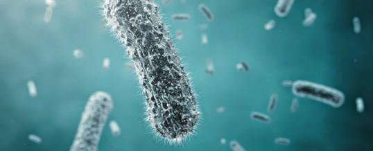 Sem enzimas não vivemos