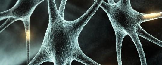 Neurocientista defende intuição como fenômeno real